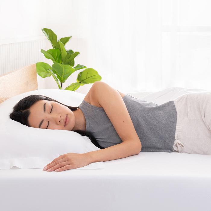 Shiloh Memory Foam Sleep Innovations