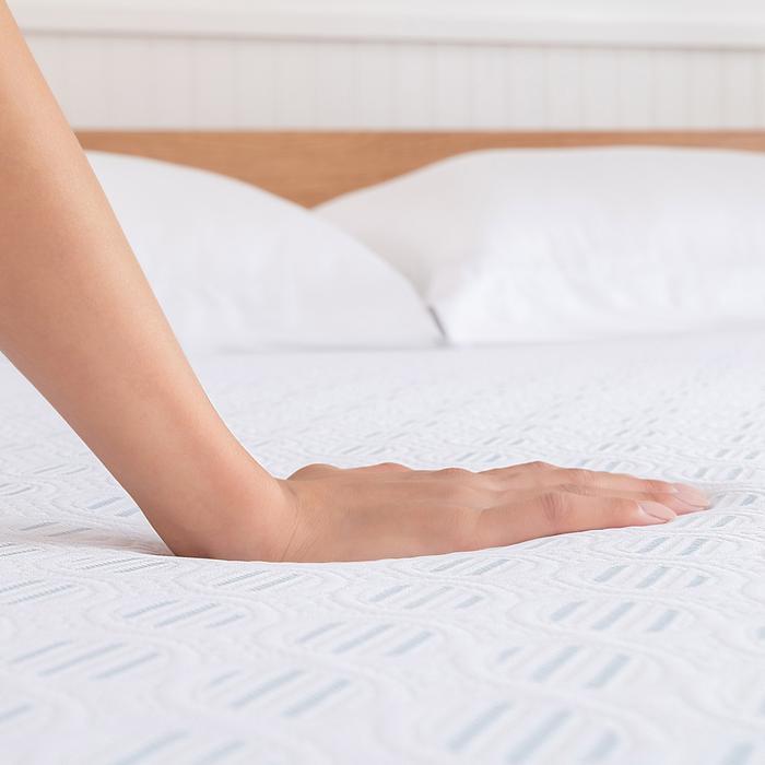 Sleep Innovations Shiloh Memory Foam